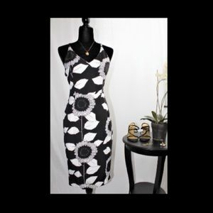 Gorgeous Cals Black and White Dress